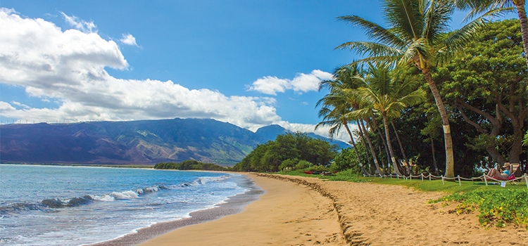 Voters weigh in on short-term rental issues in Maui, California, and Maine